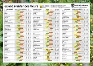 Jardinage fleur - Quand planter des fraisiers ...